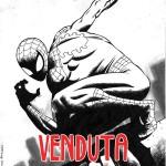 Spider-man di Ivano Codina venduta